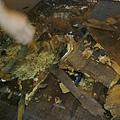 簡約無縫木地板-歐洲白橡-120303918施工前海島木地板-樹林 超耐磨木地板/強化木地板