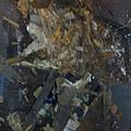 簡約無縫木地板-歐洲白橡-120303919施工前海島木地板-樹林 超耐磨木地板/強化木地板