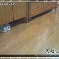 鋼琴面拍立扣-柚木-12051511-超耐磨木地板強化木地板.JPG