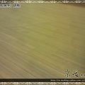 新拍立扣-胡桃-12072302-超耐磨木地板 強化木地板.JPG