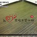 無縫抗潮  賓賓系列-歐風線條-12082005-桃園中壢-超耐磨木地板 強化木地板.jpg