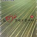 無縫抗潮  賓賓系列-歐風線條-12082008-桃園中壢-超耐磨木地板 強化木地板.jpg