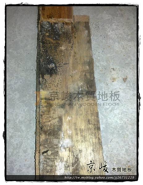 拆木地板-12081001-中壢 拆海島木地板.jpg