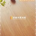 無縫抗潮 賓賓系列-稻香橡木02-超耐磨木地板.強化木地板.JPG