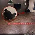 倒角系列-義式咖啡-超耐磨木地板強化木地板 (4).jpg