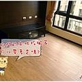 拿鐵橡木-超耐磨木地板-拆地板02.jpg