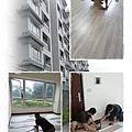 無縫抗潮-馬爾墨柚木-超耐磨木地板-施工3.jpg