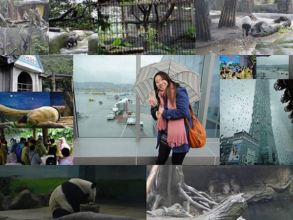 1001209六年級校外教學-資策會台北動物園.jpg