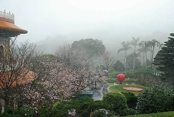 雨中天元宮2.JPG