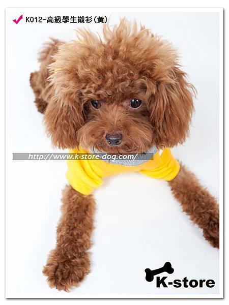 K012-高級學生襯衫(黃)-2.jpg