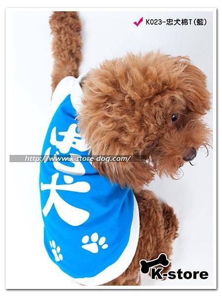 K023-忠犬棉T(藍)-4.jpg