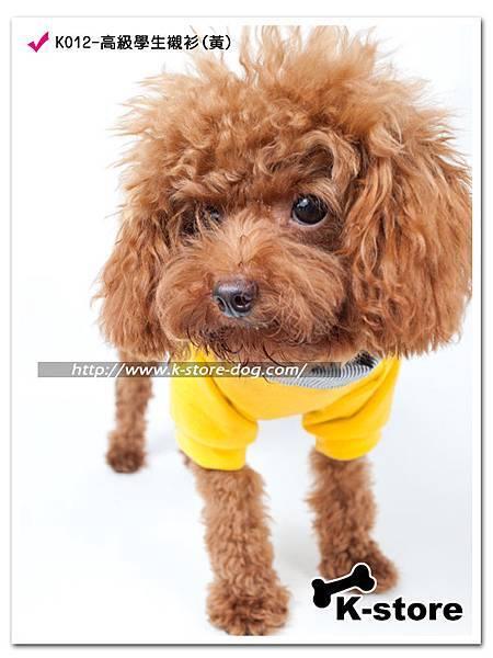 K012-高級學生襯衫(黃)-3.jpg
