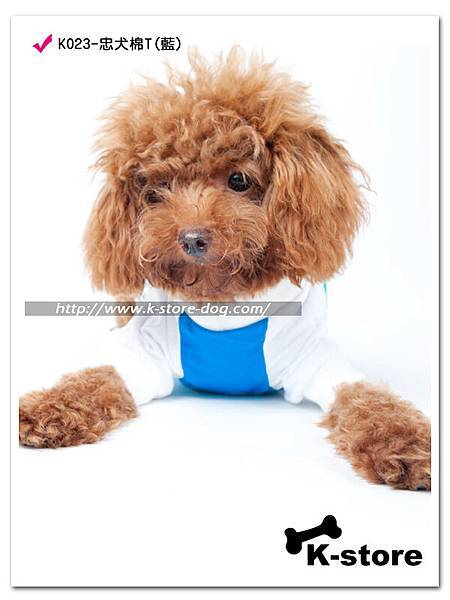 K023-忠犬棉T(藍)-3.jpg