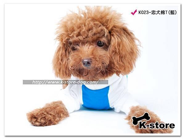 K023-忠犬棉T(藍)-1.jpg