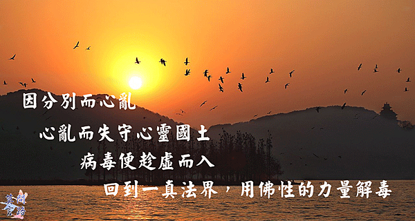 sunset-2203888_1280.png