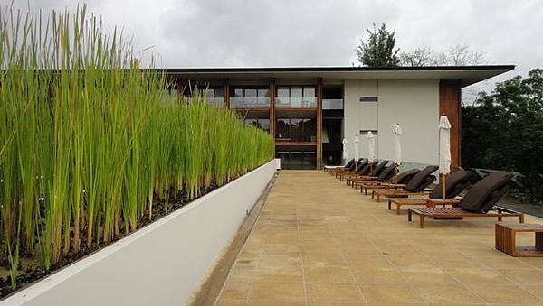 The Chedi游泳池6