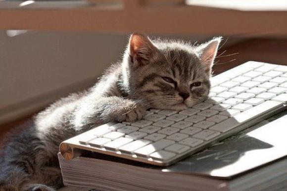l-Computers-are-so-boring...