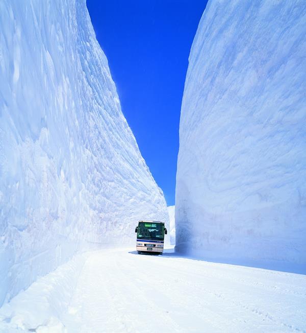 立山黑部的雪壁