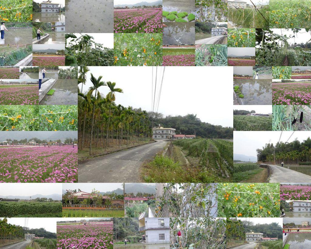 高雄美濃2014.013.jpg