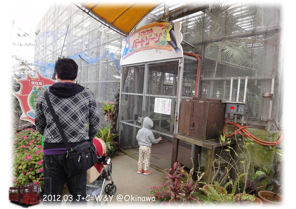 3.24熱帶水果園6