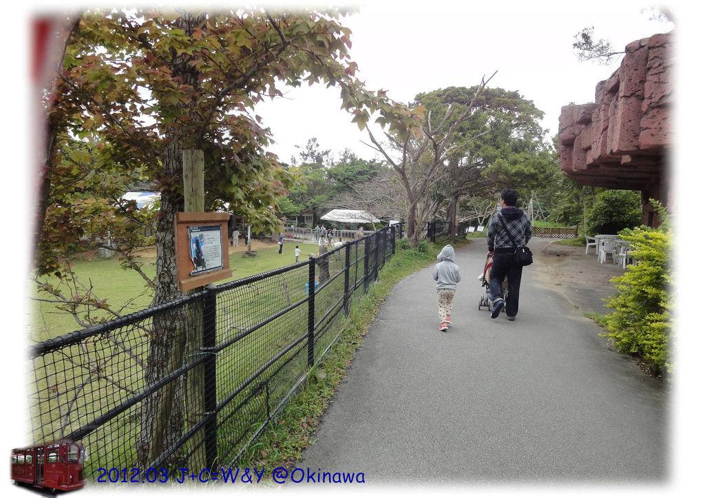 3.24名護市立動植物園10