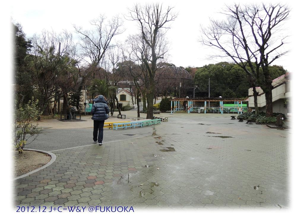 12.28 動物園3