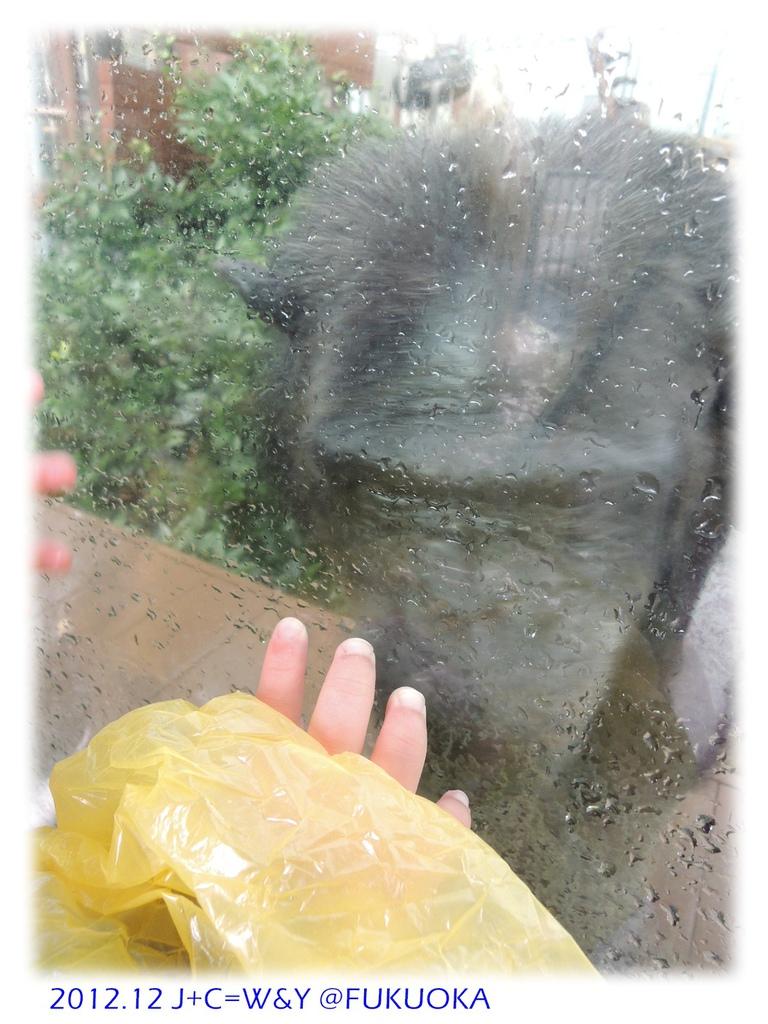 12.28 動物園29