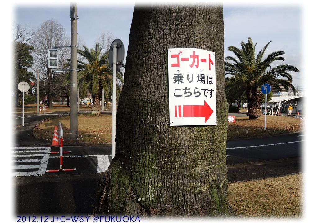 12.29 貝塚交通公園11