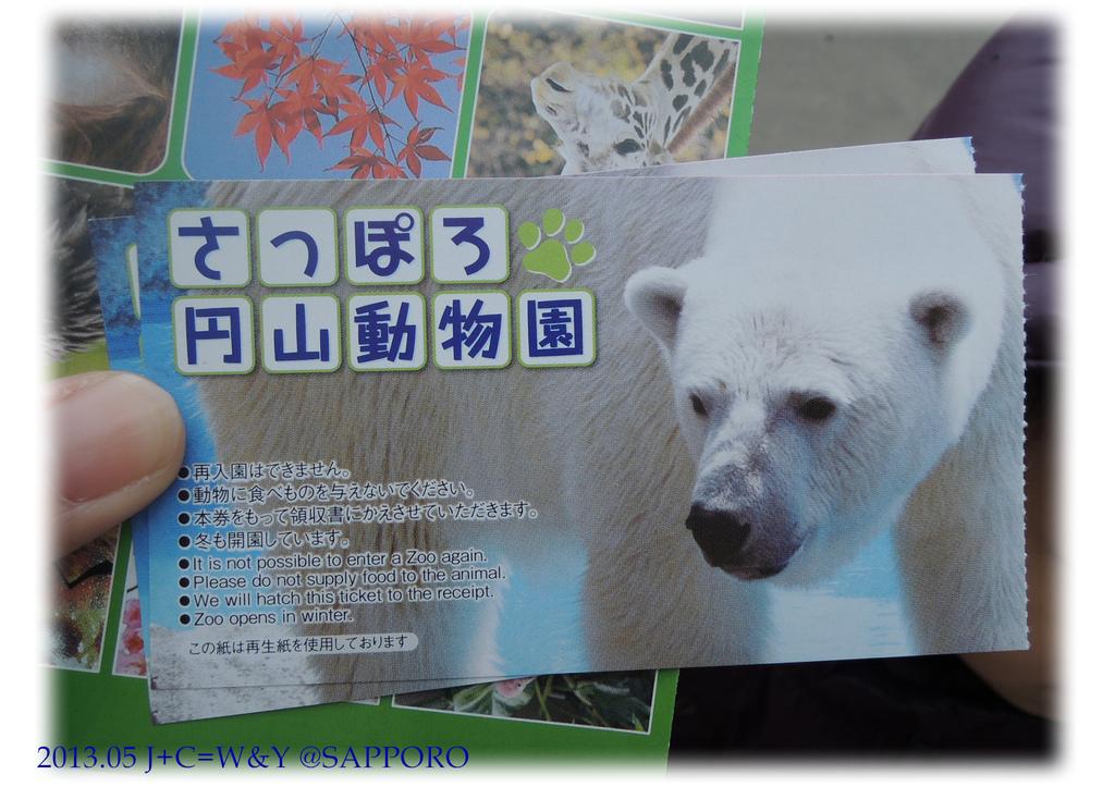 05.13 円山動物園 10.jpg