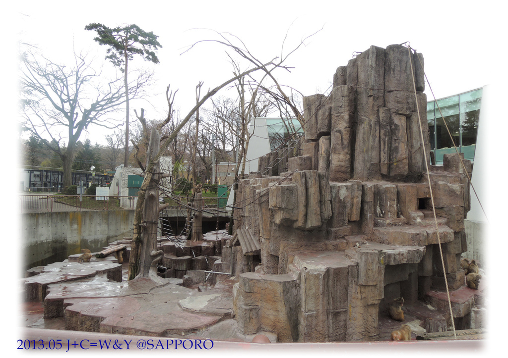 05.13 円山動物園 21.jpg