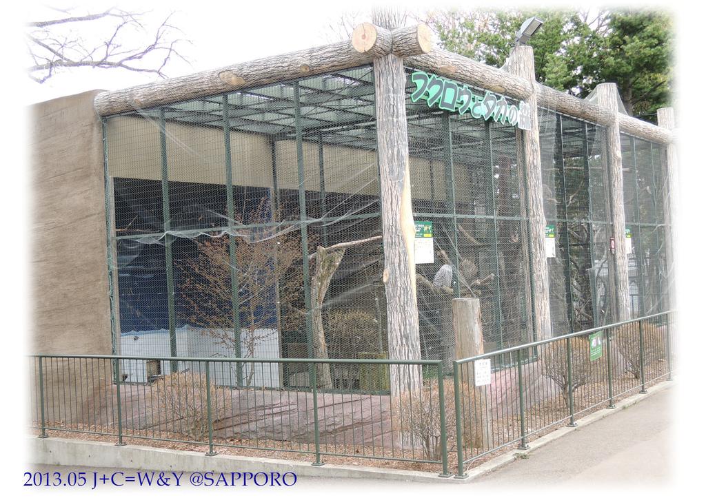 05.13 円山動物園 24.jpg