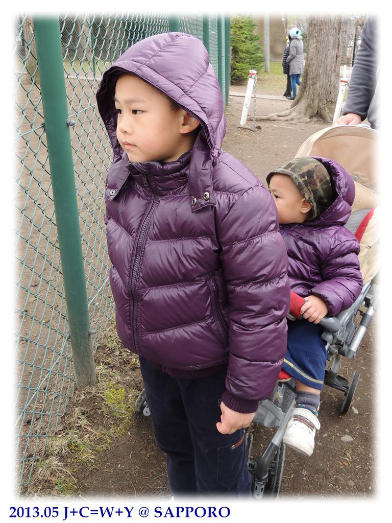 05.13 円山動物園 28.jpg
