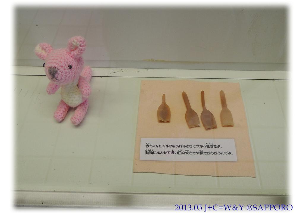 05.13 円山動物園 32.jpg
