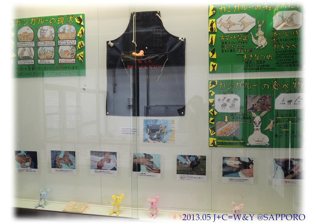 05.13 円山動物園 31.jpg