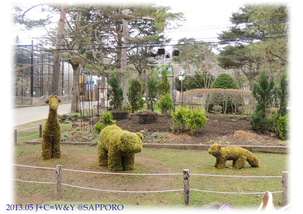 05.13 円山動物園 35.jpg