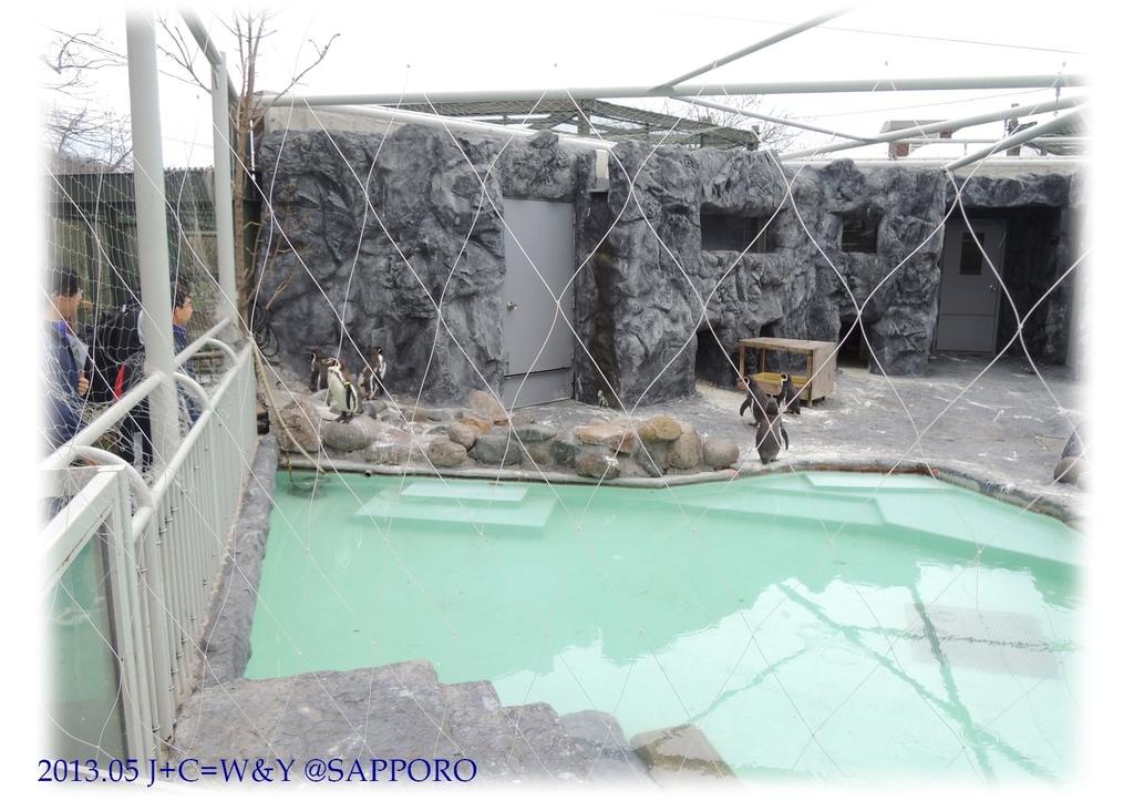 05.13 円山動物園 68.jpg