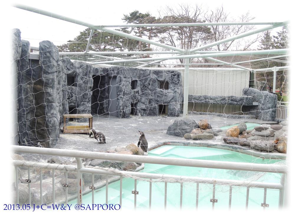 05.13 円山動物園 69.jpg