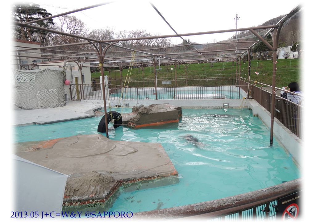 05.13 円山動物園 76.jpg