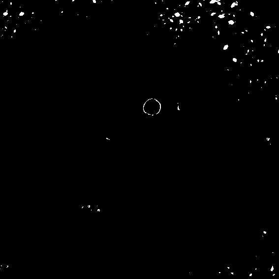 3線鼠-黑白.png