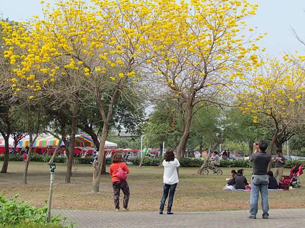 費茲洛公園20140302-2127.JPG