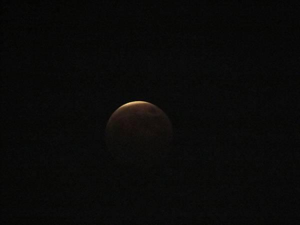 月蝕20141008-6715.JPG