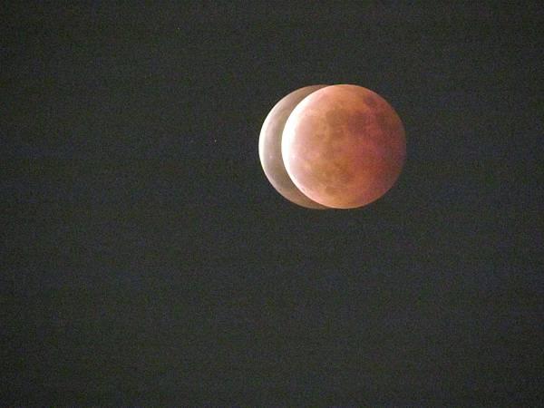 月蝕20141008-6829.JPG