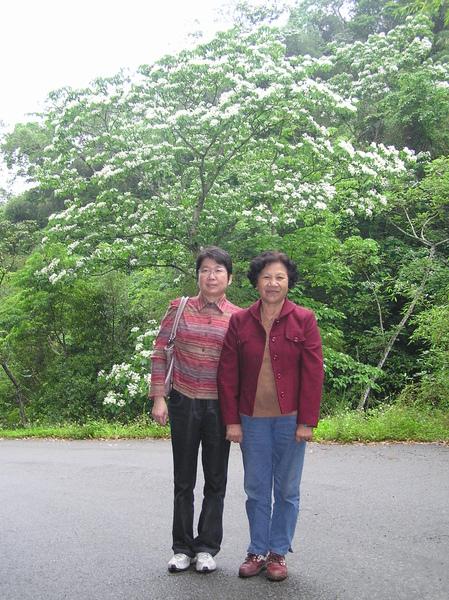 母親節2009.JPG