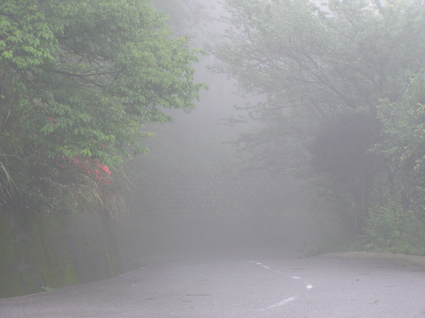 霧中.JPG