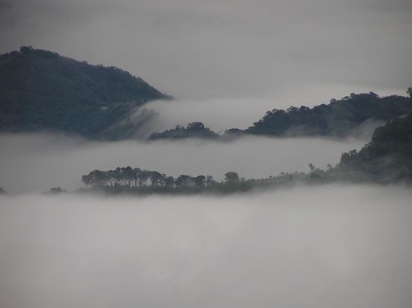 霧海.JPG