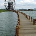 太湖公園風車2