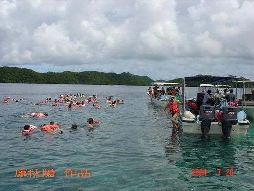 帛琉浮潛。