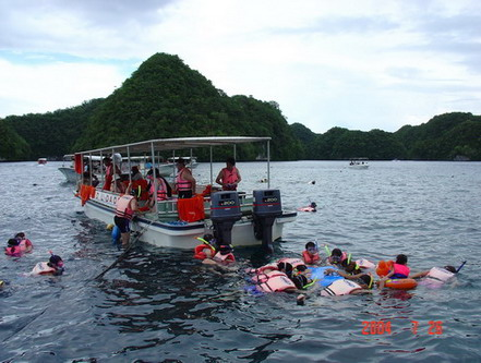 帛琉浮潛,基本工作,海水之乾淨,真清澈見底。