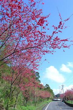 東眼山[調]02.jpg