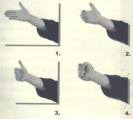 拳的部位1.jpg